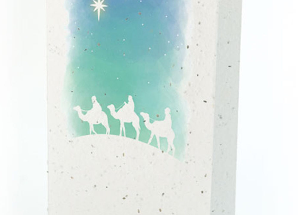 Traditional Wise Men Plantable Christmas Card