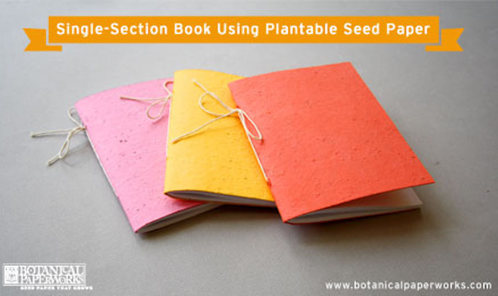 {DIY Tutorial} How to Create a Plantable Single-Section Book Using Seed Paper