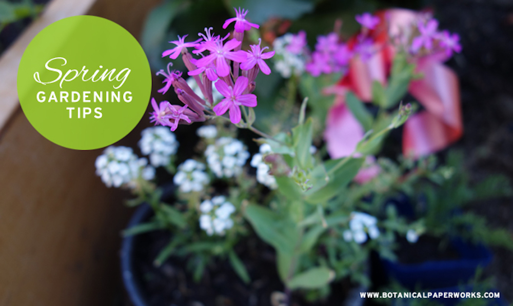 Easy Tips for Spring Gardening