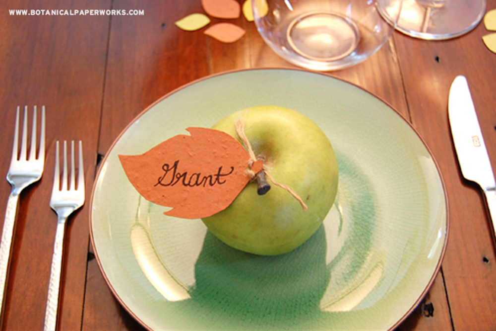 {diy tutorial} Seed Paper Thanksgiving Holiday Decor