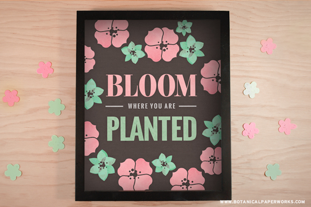 Bloom Wall Art & Wallpaper Free Download