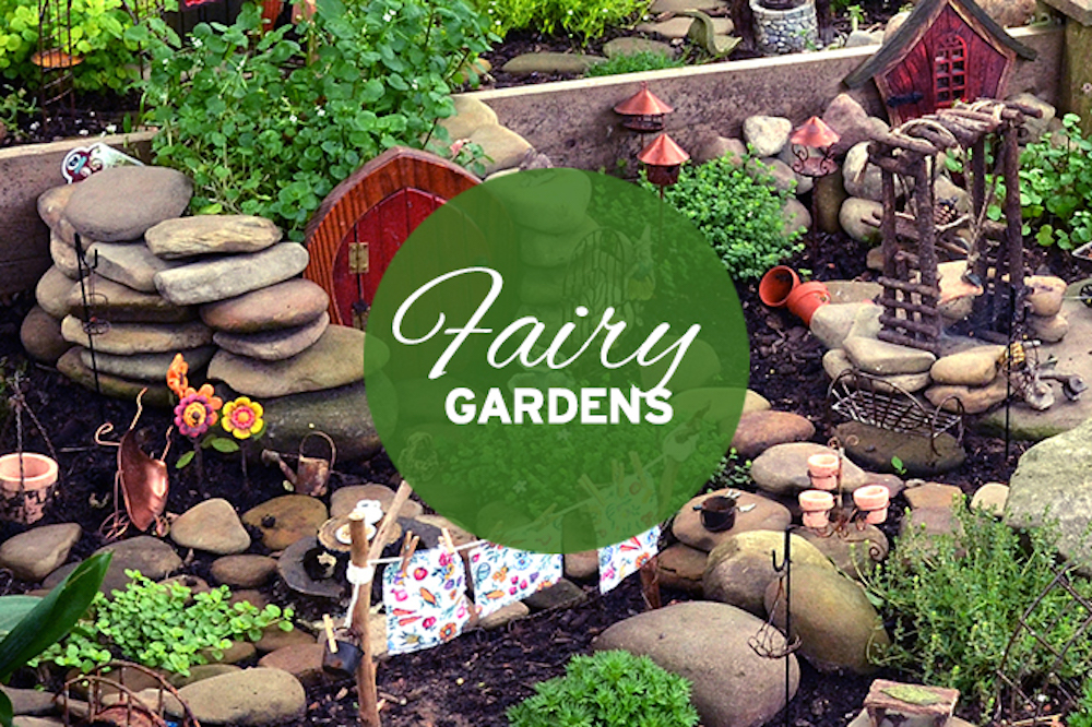A Look At Fairy Gardens