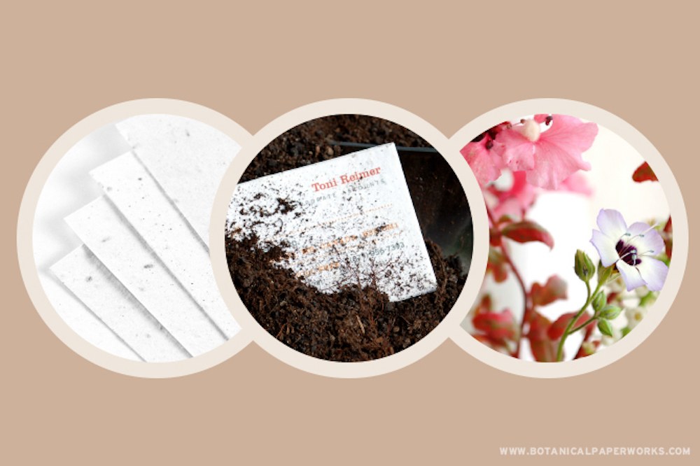 A Closer Look At Wildflower Seed Paper