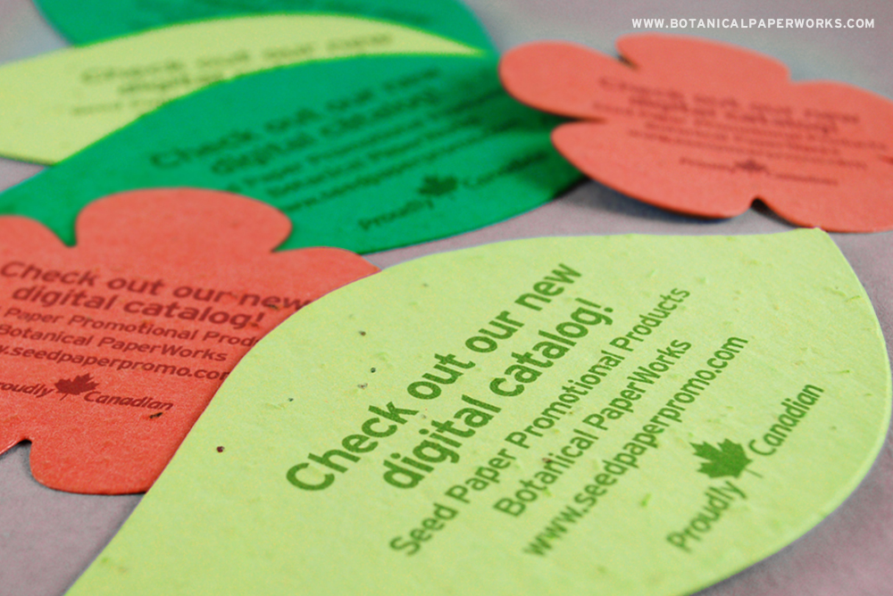 6 different plantable seed paper promotional product giveaways