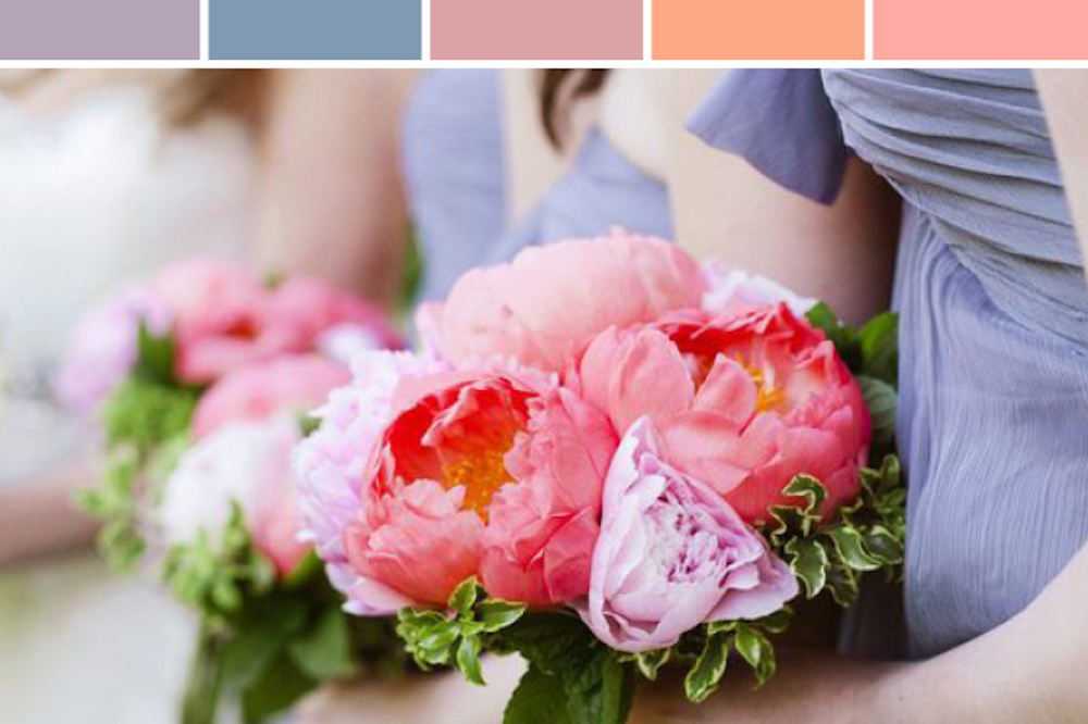 Coral, Blush & Periwinkle wedding colors