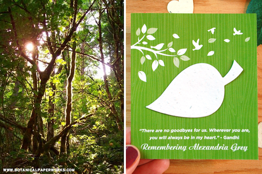 Eco friendly memorial favors to save the earth