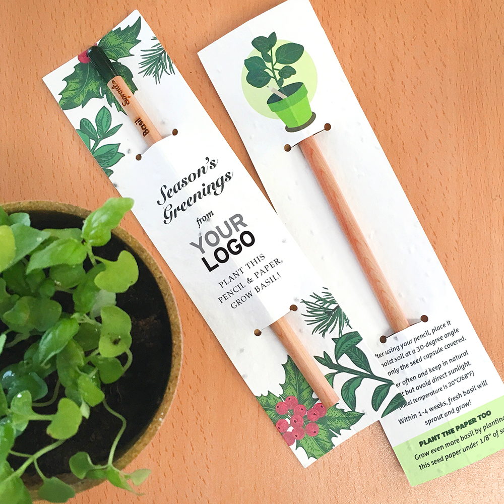 An eco-friendly plantable pencil and seed paper sleeve corporate gift that will grow into basil!