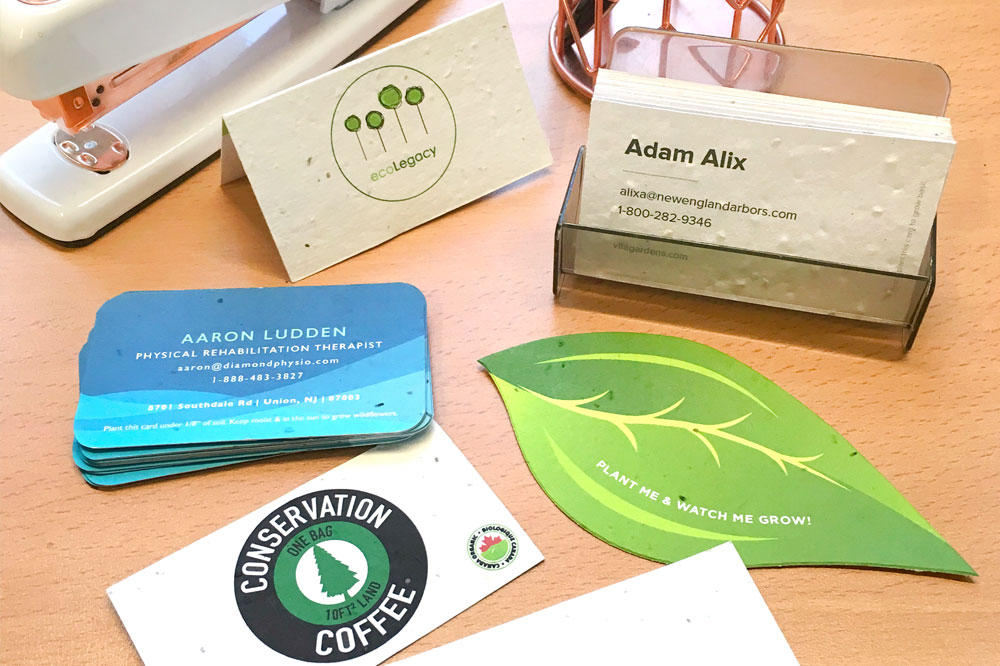 plantable business cards that grow wildflowers