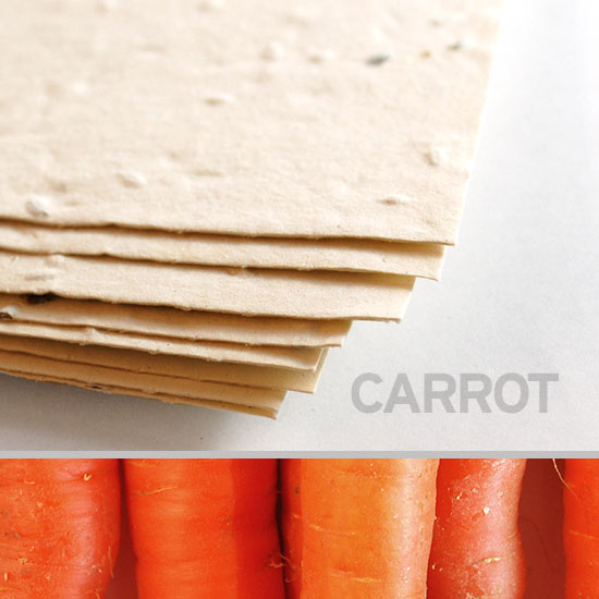 This eco-friendly 11 x 17 Cream Carrot Plantable Seed Paper is embedded with NON-GMO seeds.