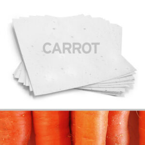 Plant this 8.5 x 11 White Carrot Plantable Seed Paper into a pot or garden and watch it grow.