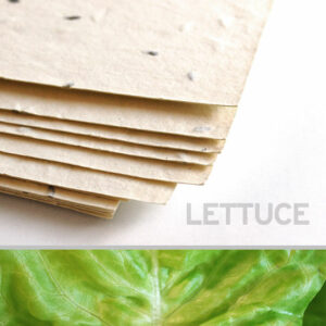This eco-friendly 11 x 17 Cream Lettuce Plantable Seed Paper is uniquely textured.