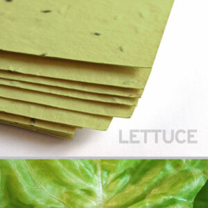 This 11 x 17 Green Lettuce Plantable Seed Paper is embedded with NON-GMO seeds that grow into actual lettuce while leaving no waste behind.