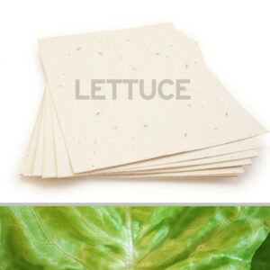 This eco-friendly 8.5 x 11 Cream Lettuce Plantable Seed Paper is infused with NON-GMO seeds.