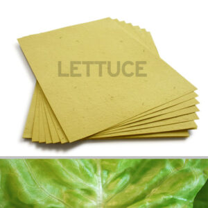 This biodegradable 8.5 x 11 Green Lettuce Plantable Seed Paper is embedded with NON-GMO seeds.