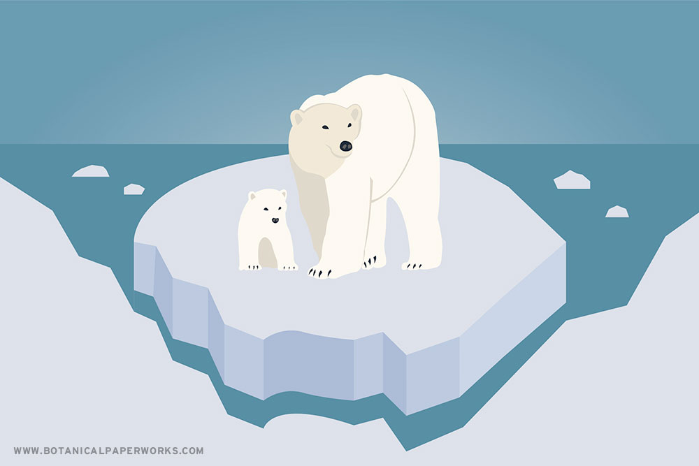 Facts About Polar Bears & Arctic Conservation for International Polar Bear Day