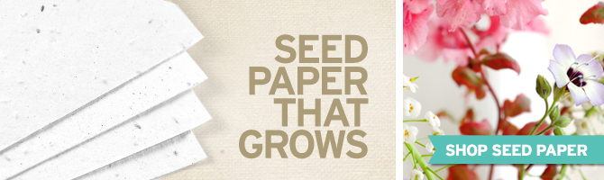 Learn more about this special paper made by Botanical PaperWorks that uses post-consumer materials and is embedded with seeds so that it will grow when planted!