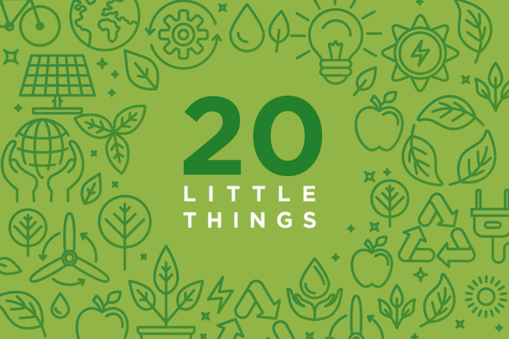 20 little things to do to be eco-friendly vector graphic