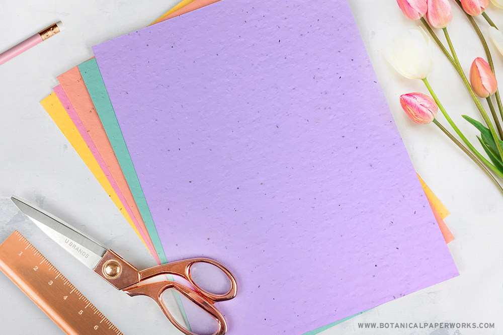 Colorful seed paper with crafting supplies
