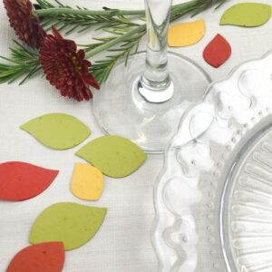 Add some charm to your table settings this season with beautiful autumn leaf seed paper confetti that won't leave any waste behind.