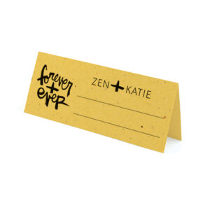 These modern and fun Brush Script Plantable Place Cards feature bold brush script typography by artist Kal Barteski, and can even double as wedding favors because they are made with seed paper that grows.