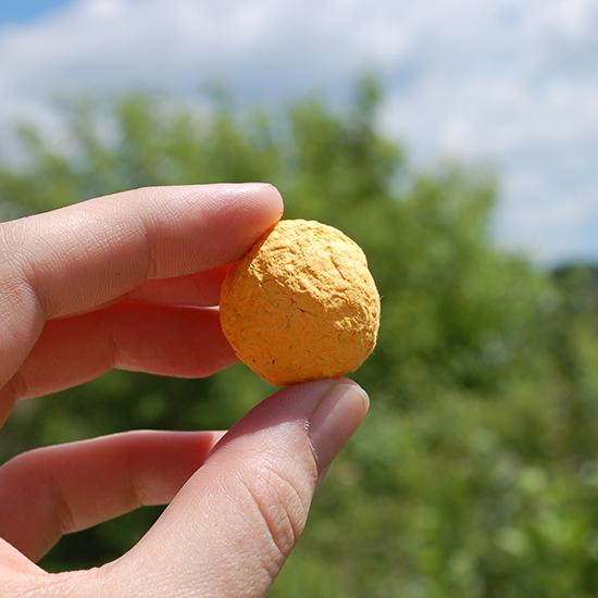 Bulk Wildflower Seed Bombs