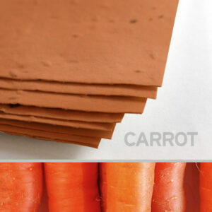 This 11 x 17 Burnt Orange Carrot Plantable Seed Paper can be planted in a pot or garden to grow actual carrots.