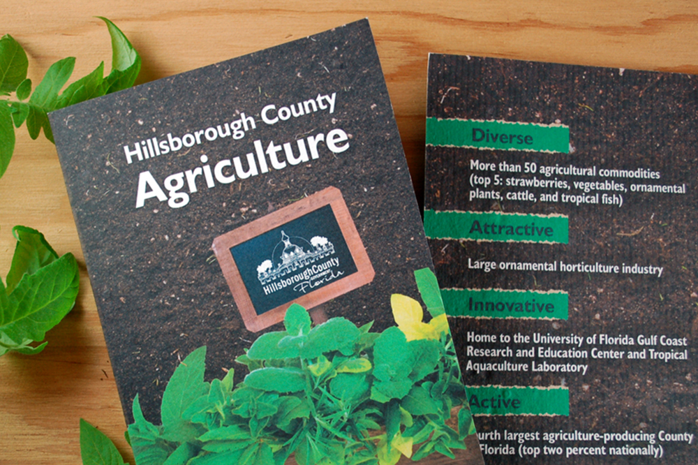 Seed Paper Brochure for Hillborough County Agriculture