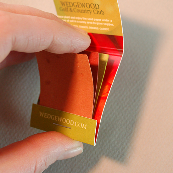 Swatches of Seed Paper