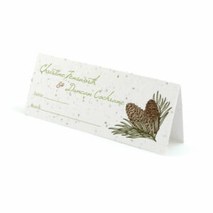 Pinecone plantable place cards