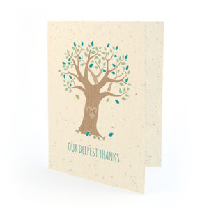 Rustic Tree Thank You Cards