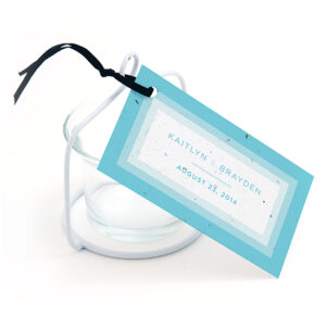 Ombre Butterfly Plantable Favor Tags