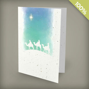 Wisemen plantable personalized christmas cards