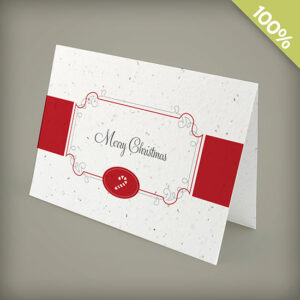 Candy Cane Personalized Christmas Seed Cards