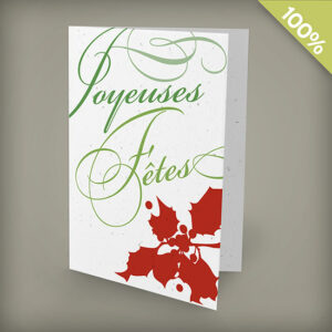 Holly Joyeuses Fêtes Personalized Cards