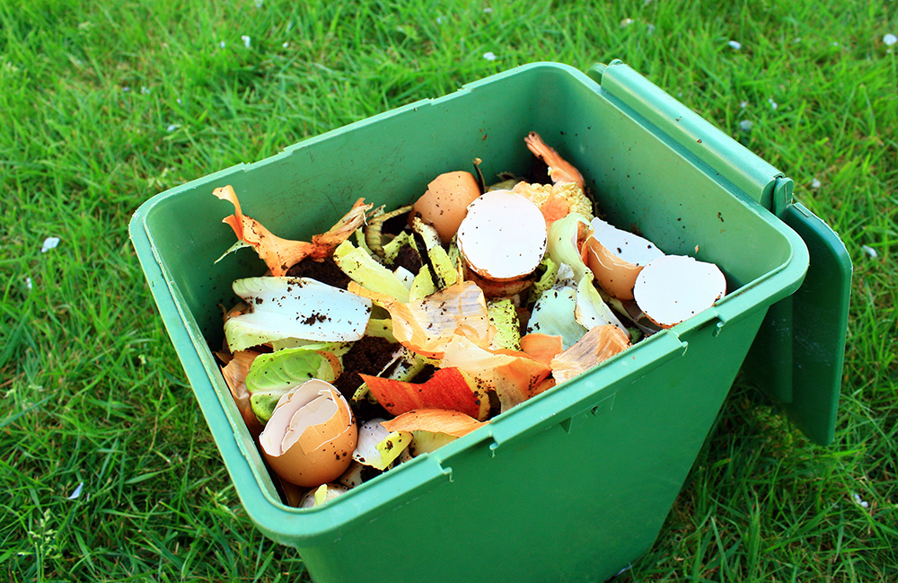 compost in a green bin