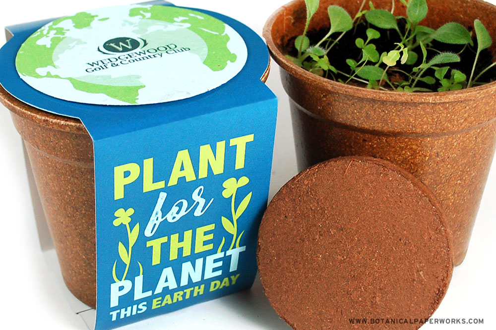 Earth Day seed paper promotions grow kits