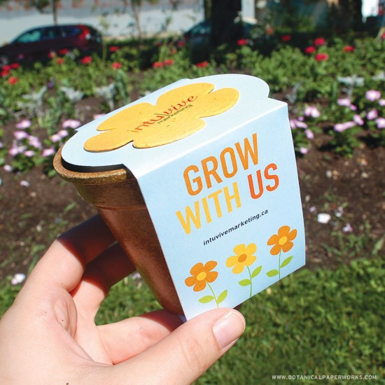 Flower Power Seed Paper Sprouter Kits