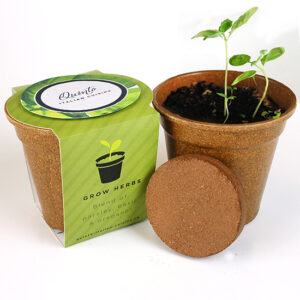 These Herb Medallion Seed Paper Sprouter Kits are the perfect eco-friendly corporate gifts for any time of year since they can easily be grown indoors!
