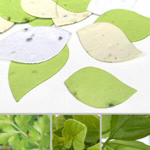 Biodegradable herb seed confetti that grows basil, parsley and oregano.
