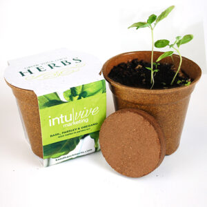 These Herb Seed Paper Sprouter Kits are a totally unique corporate gift that gives a gift they can enjoy for months to come!