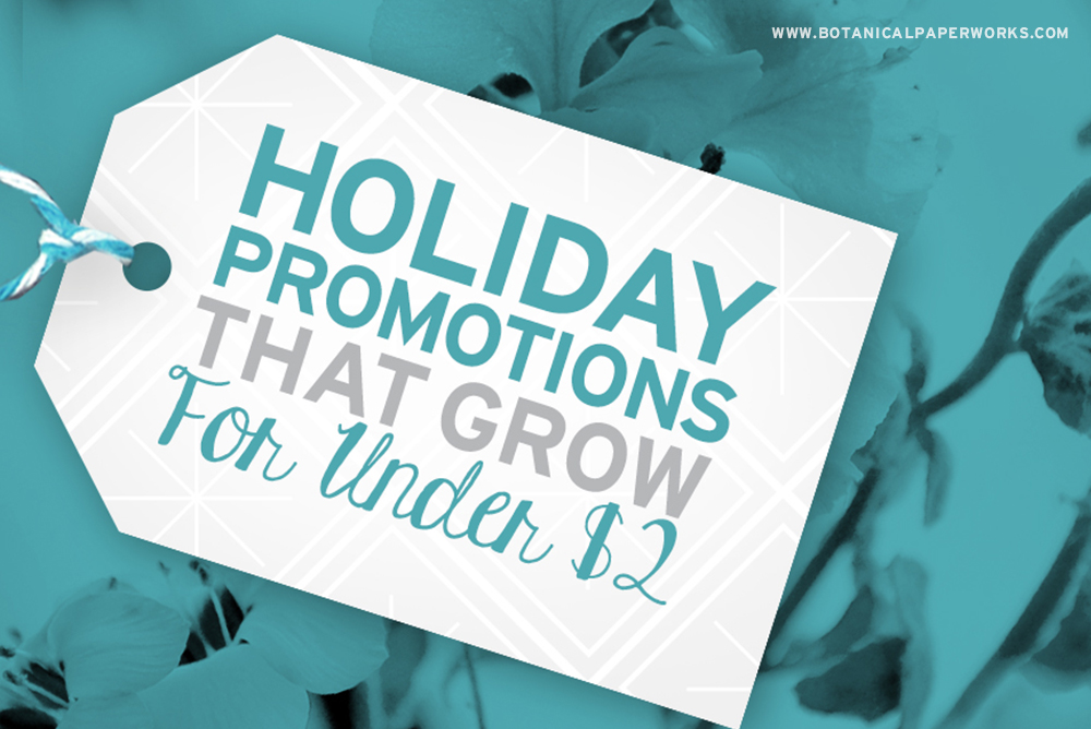 Holiday Promotional Products that Grow for Under $2 Each