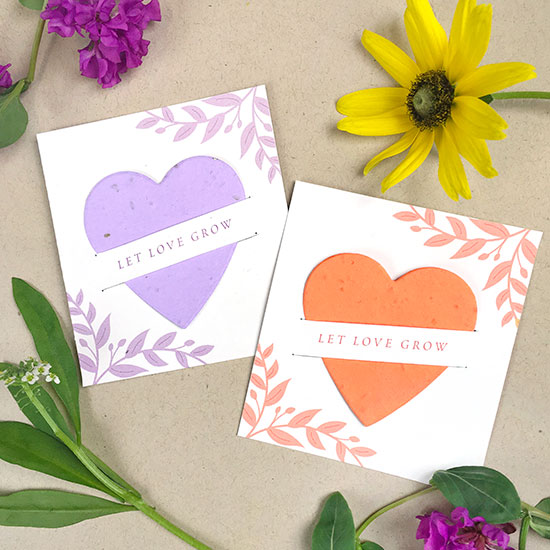 Plantable wedding favors that give the gift of wildflowers!