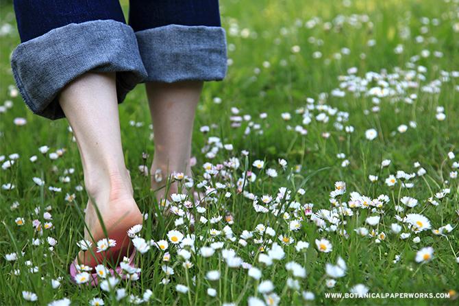 Walking through flower fields