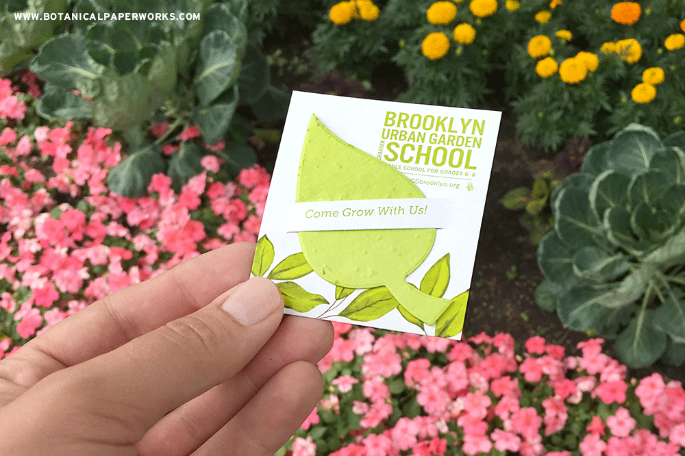 plantable seed paper promotional product for a school