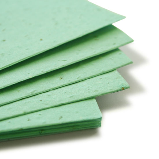 Plant this 11 x 17 Aqua Plantable Seed Paper to grow wildflowers.