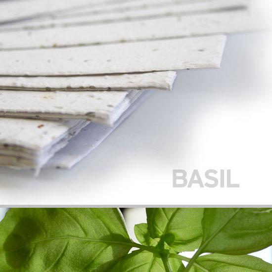 This 11 x 17 White Basil Plantable Seed Paper is a fantastic eco-friendly choice.