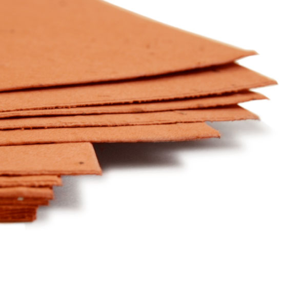 Plant this 11 x 17 Burnt Orange Plantable Seed Paper to grow wildflowers.
