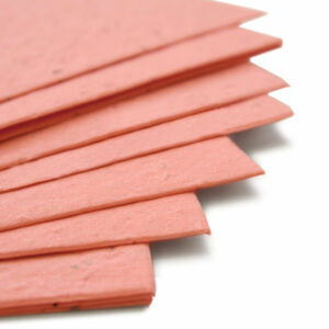This 11 x 17 Coral Plantable Seed Paper is eco-friendly.