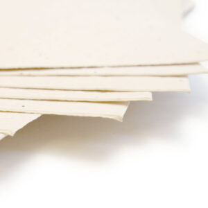 This eco-friendly 11 x 17 Cream Plantable Seed Paper is embedded with wildflower seeds.