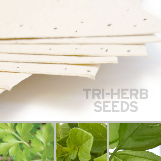 This special 11 x 17 Cream Edible Tri-Herb Seed Paper grows herbs when you plant it.